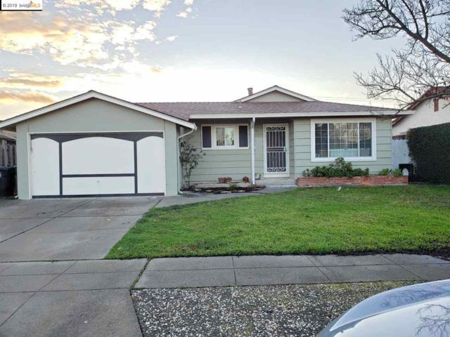5054 Brett Ct, Fremont, CA 94538 (#EB40853973) :: Julie Davis Sells Homes