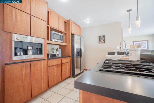 1231 Brookview Dr, Concord, CA 94520 (#CC40854204) :: The Gilmartin Group