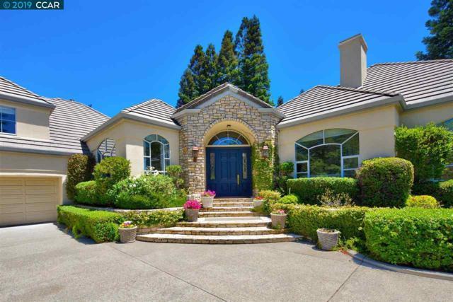 3177 Blackhawk Meadow Drive, Danville, CA 94506 (#CC40854390) :: The Kulda Real Estate Group