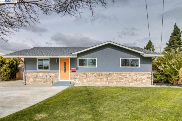 33790 Dartmouth Ave, Union City, CA 94587 (#BE40855601) :: Julie Davis Sells Homes