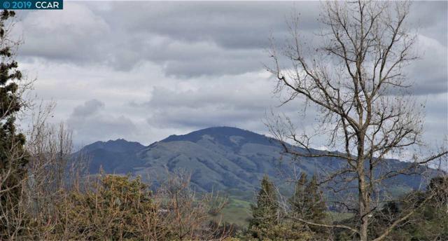 2301 Pine Knoll Dr, Walnut Creek, CA 94595 (#CC40856285) :: Perisson Real Estate, Inc.