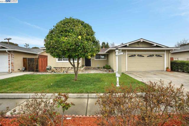 37052 Lassen St, Fremont, CA 94536 (#BE40856359) :: Perisson Real Estate, Inc.