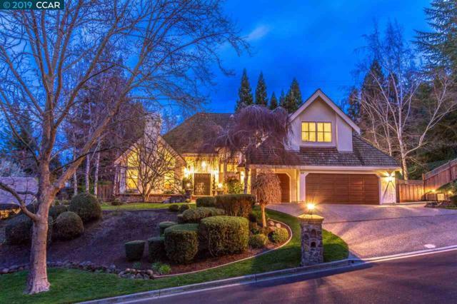 53 Wild Oak Pl, Danville, CA 94506 (#CC40856514) :: The Gilmartin Group