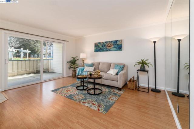 46804 Winema Cmn, Fremont, CA 94539 (#BE40856584) :: The Kulda Real Estate Group