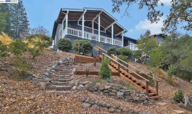 100 Valley Oaks Dr, Alamo, CA 94507 (#BE40856727) :: The Goss Real Estate Group, Keller Williams Bay Area Estates