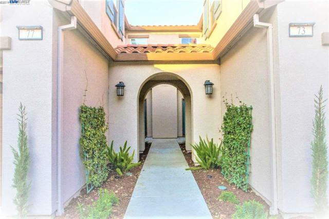 73 W Luna Loca Ln, Mountain House, CA 95391 (#BE40857435) :: The Kulda Real Estate Group