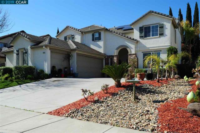 2426 Silveria Way, Antioch, CA 94531 (#CC40857586) :: The Kulda Real Estate Group