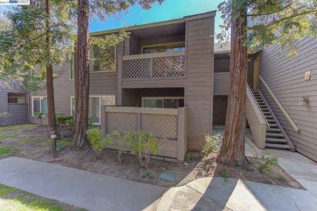 850 Catkin Court, San Jose, CA 95128 (#BE40857619) :: The Gilmartin Group