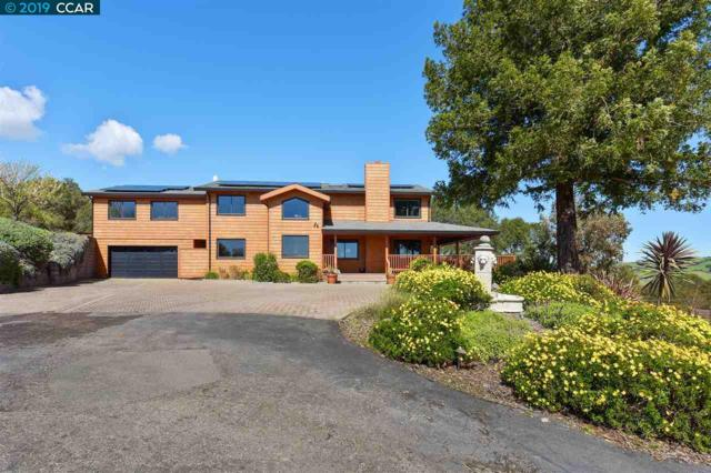 1290 Bear Creek Road, Martinez, CA 94553 (#CC40858019) :: The Goss Real Estate Group, Keller Williams Bay Area Estates