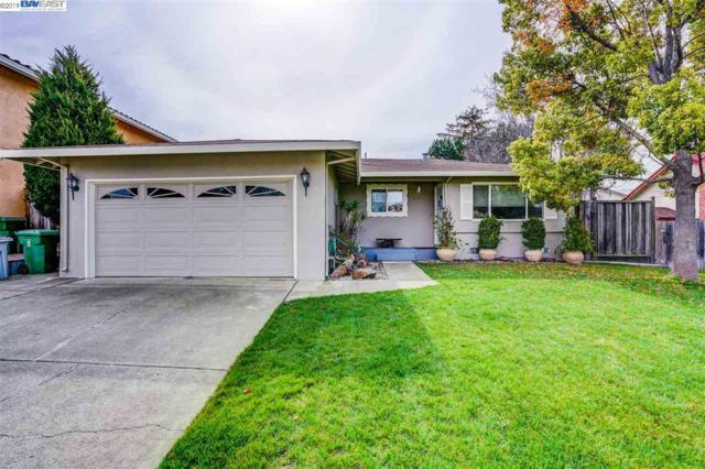 228 Goldenrain Ave, Fremont, CA 94539 (#BE40858026) :: The Warfel Gardin Group