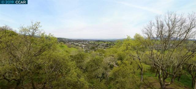 1766 Stanley Dollar Drive, Walnut Creek, CA 94595 (#CC40858070) :: Julie Davis Sells Homes