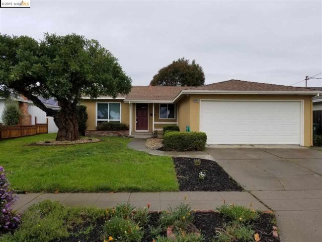 36074 Newark Blvd, Newark, CA 94560 (#EB40858280) :: Strock Real Estate