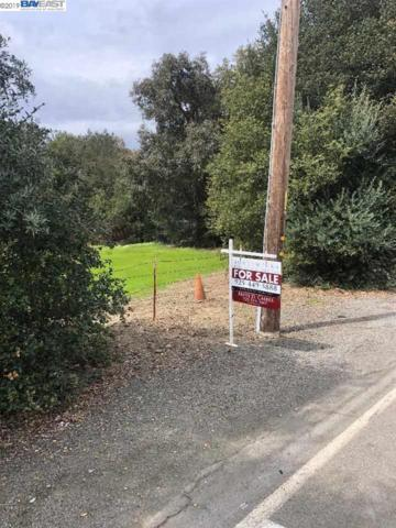 Kilkare Rd, Sunol, CA 94586 (#BE40858418) :: Strock Real Estate
