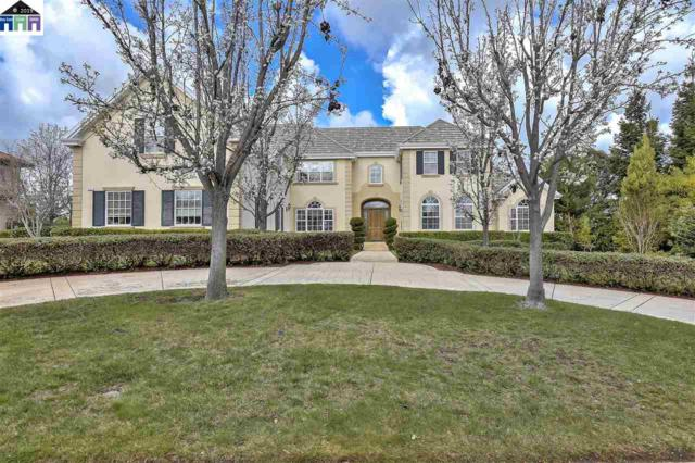 1121 Via Di Salerno, Pleasanton, CA 94566 (#MR40860601) :: The Kulda Real Estate Group