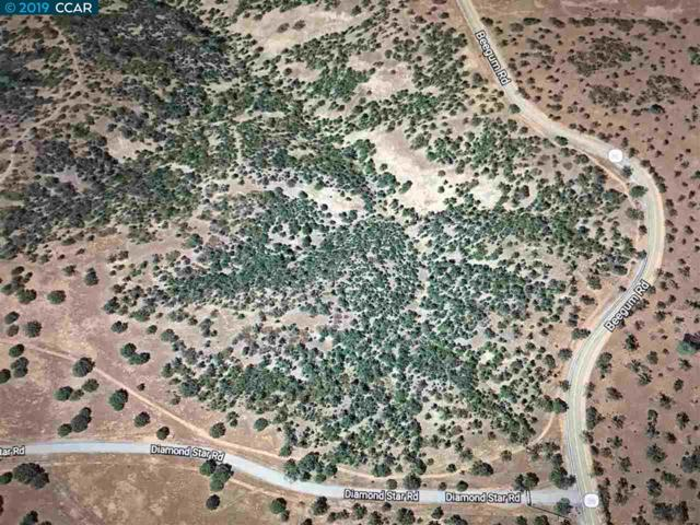 Diamond Star Rd, Red Bluff, CA 96080 (#CC40861223) :: Strock Real Estate
