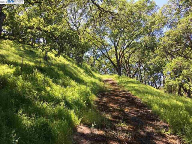 283 Castle Hill Ranch Rd, Walnut Creek, CA 94595 (#BE40861323) :: The Warfel Gardin Group