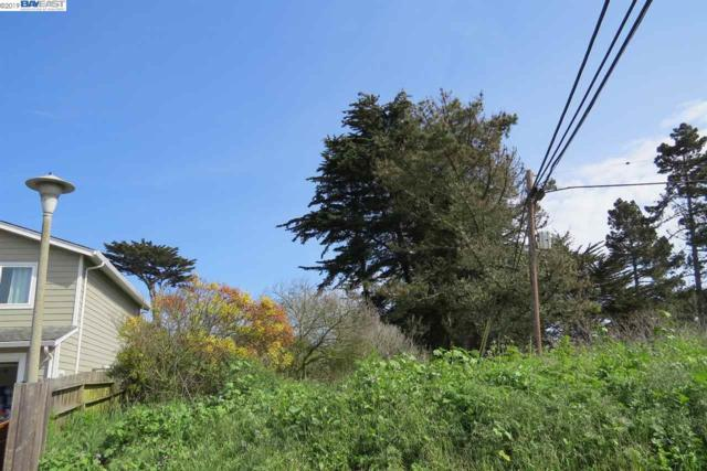 000 Terrace Avenue, Moss Beach, CA 94038 (#BE40861344) :: The Realty Society
