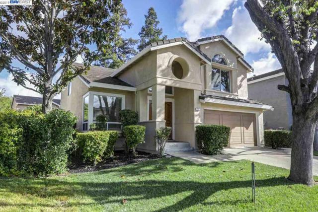 6207 Camino Del Lago, Pleasanton, CA 94566 (#BE40861442) :: The Kulda Real Estate Group