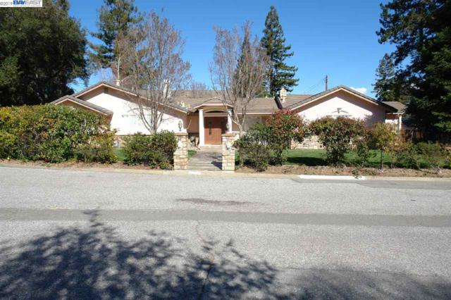 20821 Canyon View Dr, Saratoga, CA 95070 (#BE40861744) :: Julie Davis Sells Homes