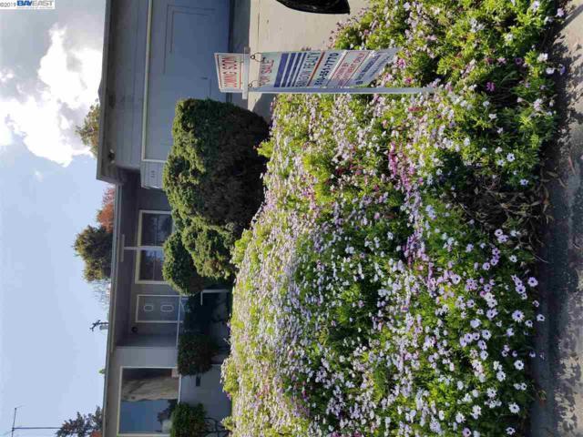 519 Madera Dr, San Mateo, CA 94403 (#BE40861919) :: Perisson Real Estate, Inc.