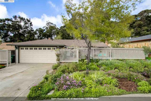 2052 Nina Ct, Hayward, CA 94541 (#BE40862142) :: The Realty Society