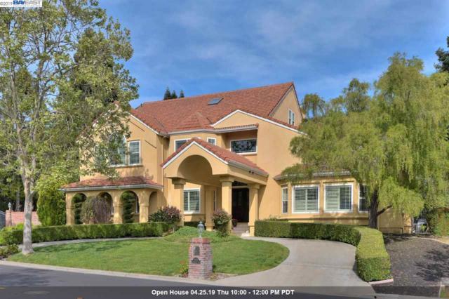 5451 Blackhawk Drive, Danville, CA 94506 (#BE40862196) :: The Realty Society
