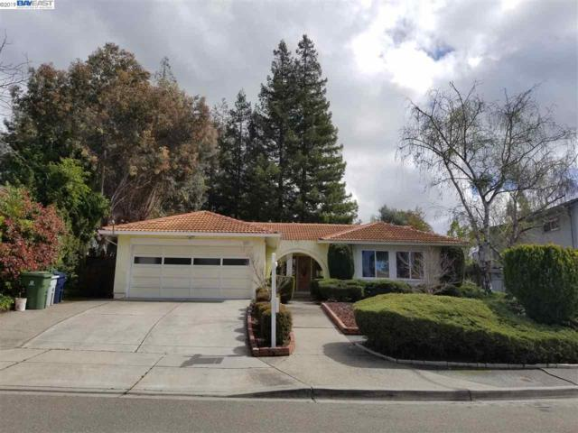 277 Tordo Ct, Fremont, CA 94539 (#BE40862335) :: Julie Davis Sells Homes