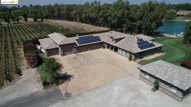 1038 Petite Sirah Ln, Brentwood, CA 94513 (#EB40864114) :: Strock Real Estate