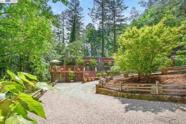 1327 Firview Dr, Calistoga, CA 94515 (#BE40865012) :: Strock Real Estate