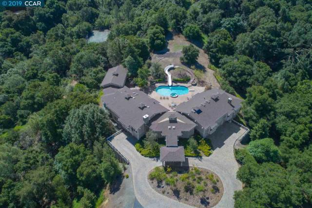 25 Rustic Way, Orinda, CA 94563 (#CC40865165) :: Strock Real Estate