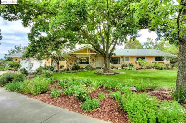 2806 Stirrup Dr, Oakley, CA 94561 (#EB40865393) :: Strock Real Estate