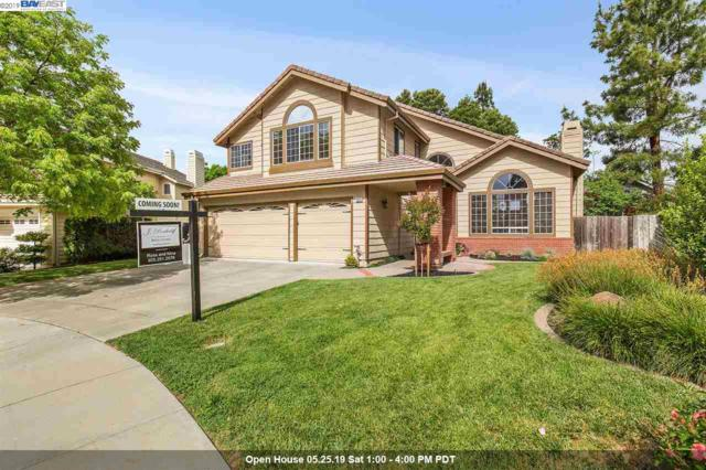 1042 Nelson Ct, Pleasanton, CA 94566 (#BE40865661) :: Strock Real Estate