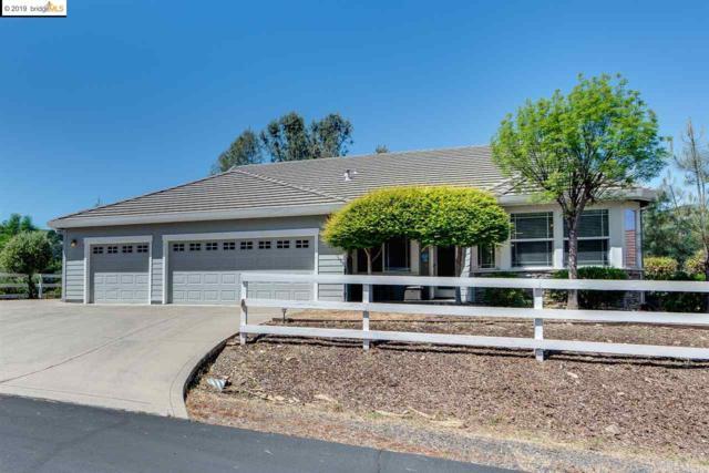 6238 Bluff View Rd, Copperopolis, CA 95228 (#EB40866008) :: Strock Real Estate