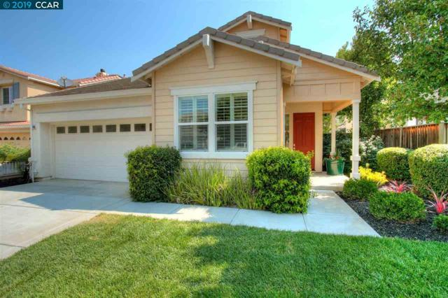 496 Montecito Dr, Brentwood, CA 94513 (#CC40866647) :: Keller Williams - The Rose Group