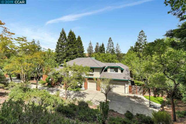 30 Viejo Vista, Alamo, CA 94507 (#CC40866807) :: The Warfel Gardin Group