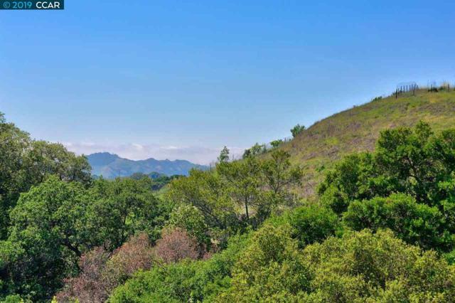 1267 Bollinger Canyon Road, Moraga, CA 94556 (#CC40867021) :: Strock Real Estate