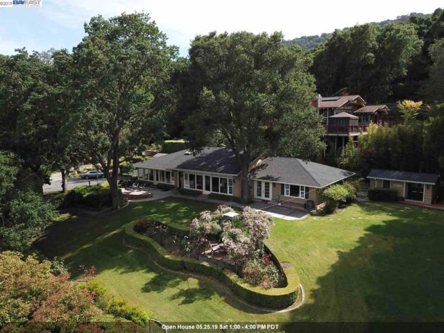1584 Foothill Rd, Pleasanton, CA 94588 (#BE40867041) :: Strock Real Estate