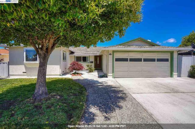 35284 Aquado Ct, Fremont, CA 94536 (#BE40867043) :: Strock Real Estate