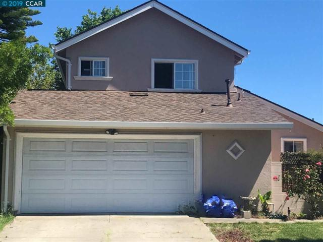 1166 Shoreland Dr, San Jose, CA 95122 (#CC40869543) :: The Kulda Real Estate Group