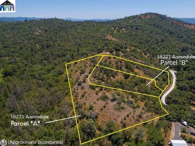 18231 Aarondale Road, Sonora, CA 95370 (#MR40870662) :: Intero Real Estate