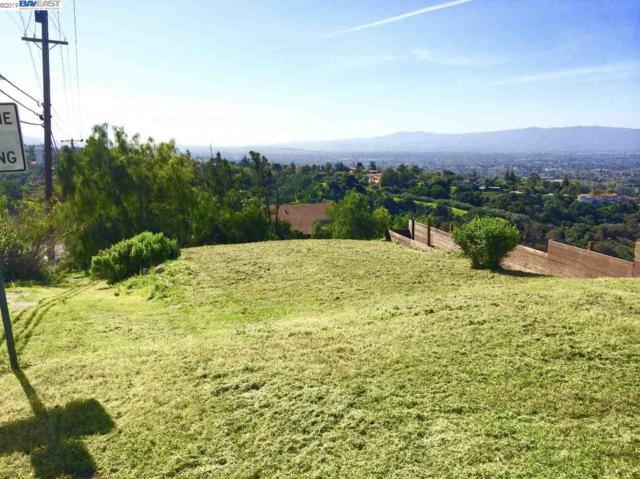 769 Boulder Dr, San Jose, CA 95132 (#BE40870767) :: Strock Real Estate