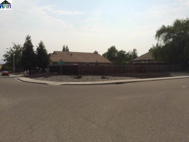 5400 Mojave Way, Antioch, CA 94531 (#MR40871371) :: Strock Real Estate