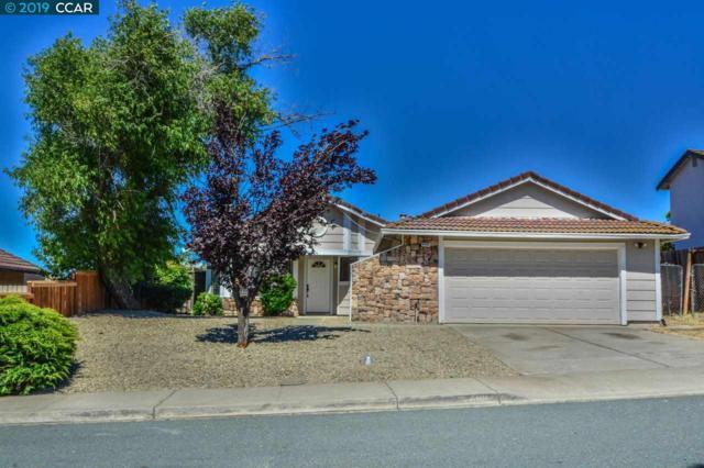 4101 Palomar Dr, Antioch, CA 94531 (#CC40871456) :: Strock Real Estate