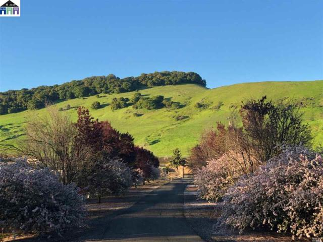 2120 American Canyon Rd, American Canyon, CA 94503 (#MR40871727) :: Strock Real Estate