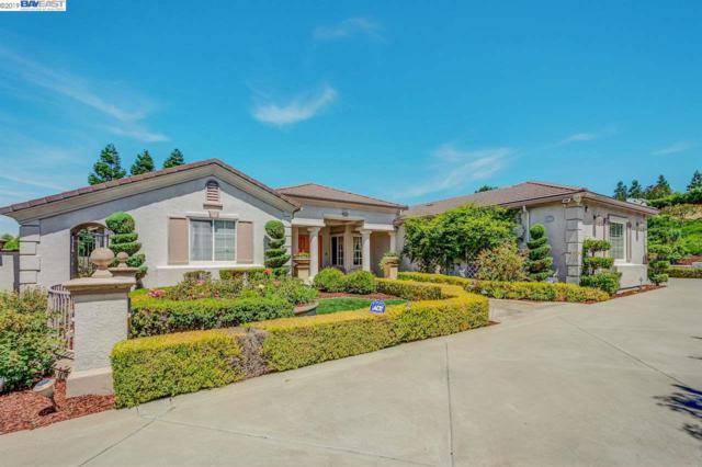 6023 Laurel Creek Dr, Pleasanton, CA 94588 (#BE40871733) :: Strock Real Estate
