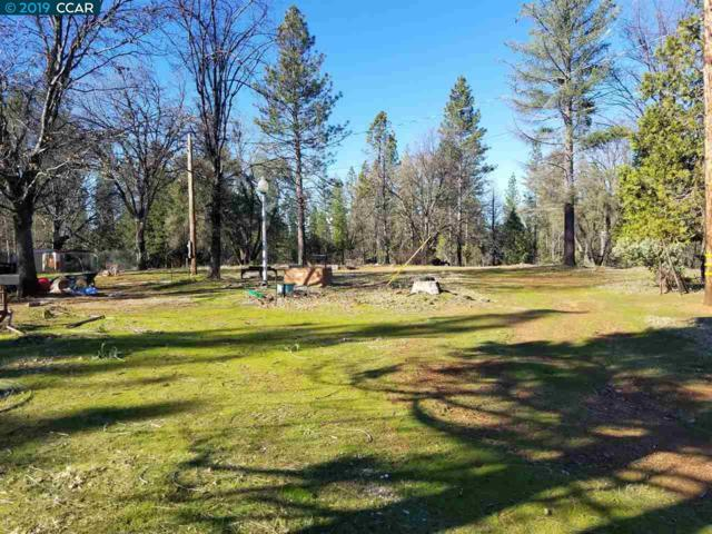 650 Blossom Lane, Mokelumne Hill, CA 95245 (#CC40872605) :: Strock Real Estate