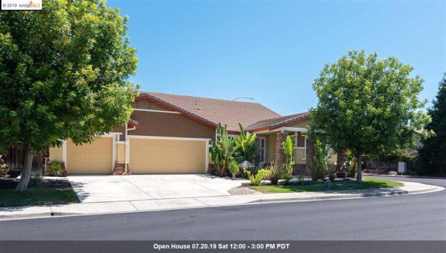 741 Marjoram Drive, Brentwood, CA 94513 (#EB40874322) :: Strock Real Estate
