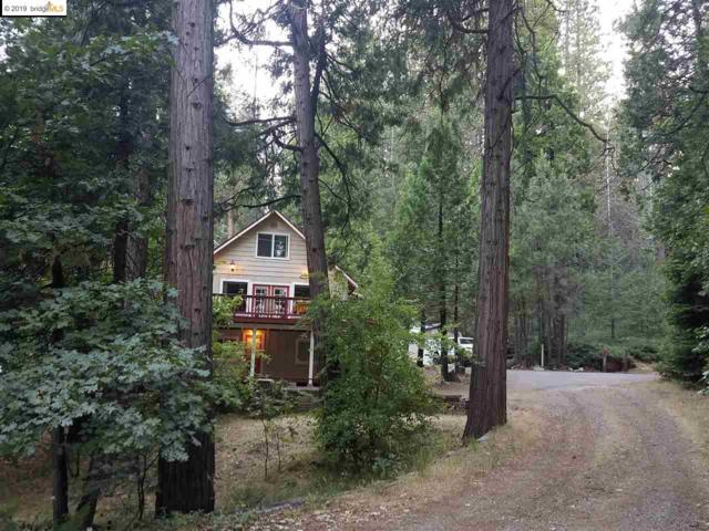 2942 Hwy 4, Arnold, CA 95223 (#EB40874420) :: Strock Real Estate