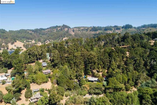 57 Panoramic Pl, Oakland, CA 94704 (#EB40874479) :: Intero Real Estate