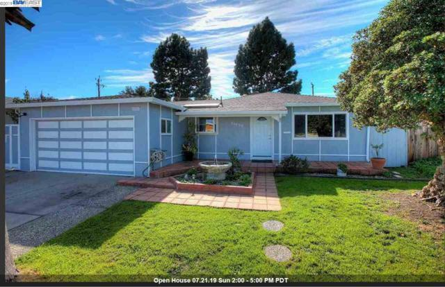 39459 Blue Fin Way, Fremont, CA 94538 (#BE40874562) :: Live Play Silicon Valley
